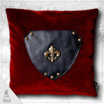 Decorative cushion Shield